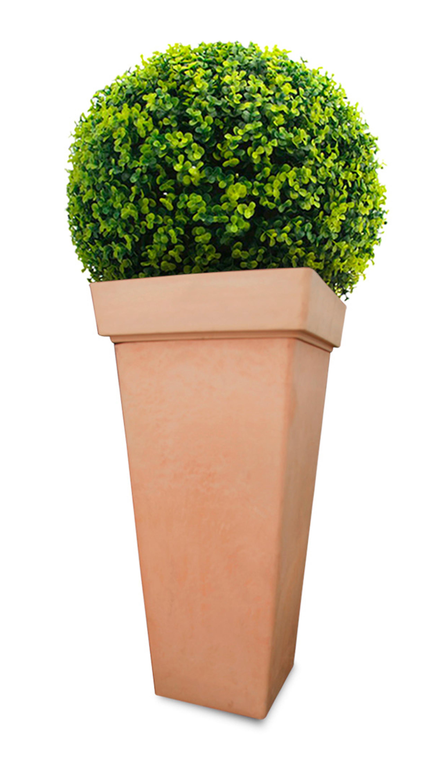 Amoedo lança vaso de planta ecológico