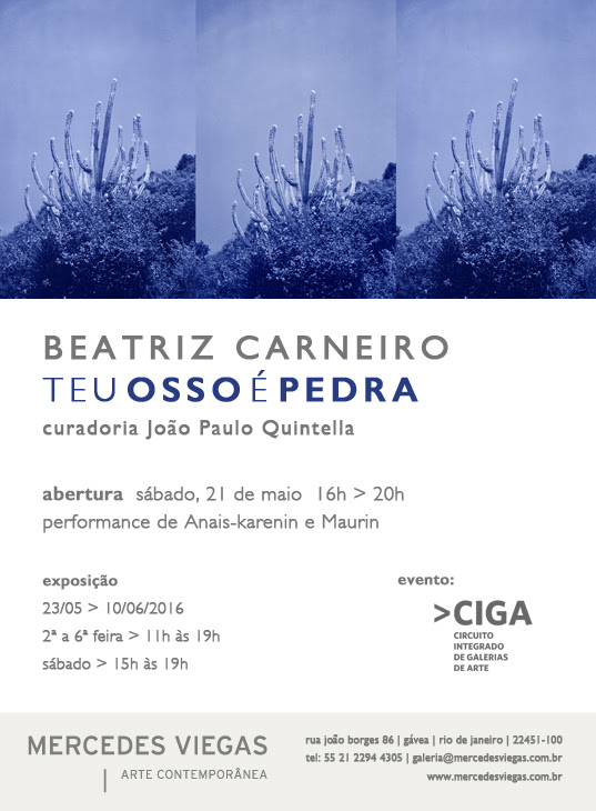 Galeria Mercedes Viegas inaugura individual da artista Beatriz Carneiro