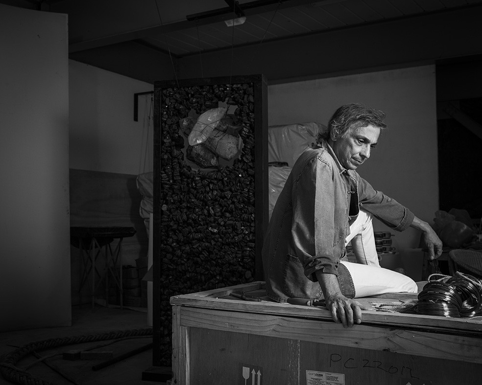 Morre o artista plástico Tunga