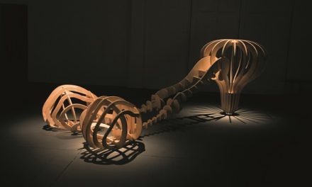 A Galeria Nara Roesler SP recebe o artista  Angelo Venosa