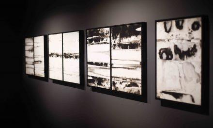 Exposição Fluvius da artista plástica Paula Klien inaugura no Rio