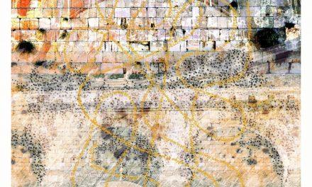 Exposição do artista Marcelo Albuquerque inicia em São Paulo nesta terça(10)