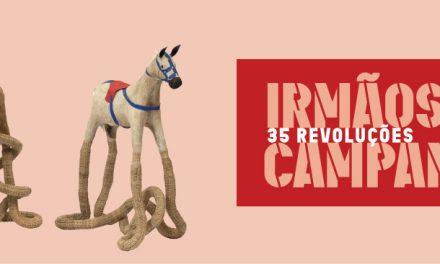 O MAM Rio inaugura a maior exposição já feita pelos Irmãos Campana