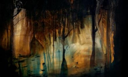 LANÇAMENTO DO CATÁLOGO SOBRE VIVENTES, da artista catarinense Juliana Hoffmann