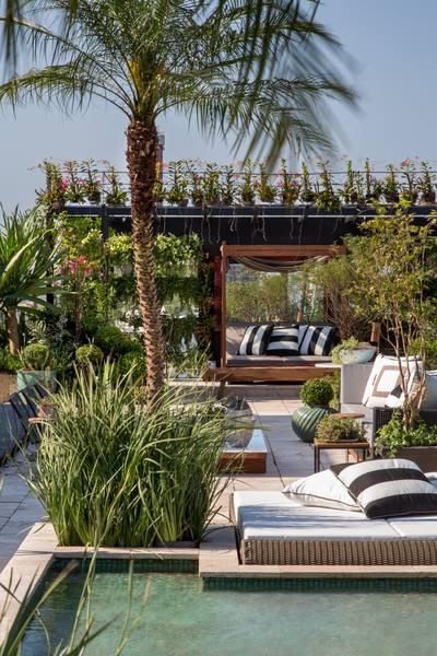 Rooftop Garden de Anna Luiza Rothier