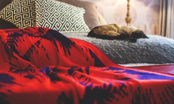 Mantas enfeitam sofás, poltronas e camas