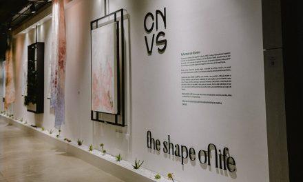 Exposição da artista plástica brasileira Yohannah de Oliveira vai até 31 de março, em Moema.