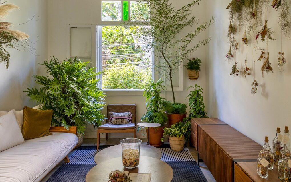 Conheça a primeira mostra botânica realizada no atelier Fernando Jaeger, no Rio.